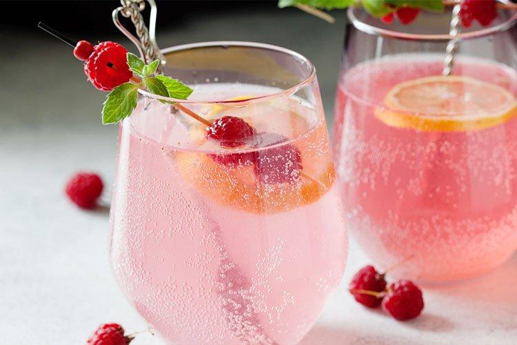 Spritzer o vino con agua con gas y frutas